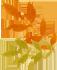 Scratch-克隆-第二讲