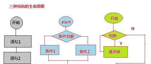 Python入门教程08:分支和循环2-判断和循环