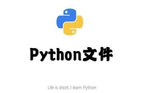 少儿Python基础(7) | 文件(2)