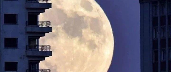 用Scratch做了个动画,解释一下什么是超级蓝月亮月全食